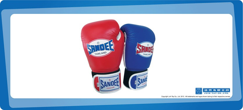 Boxing gloves with decal/> 					<img src=